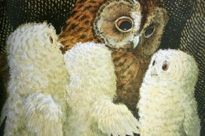 5-Owl-Babies
